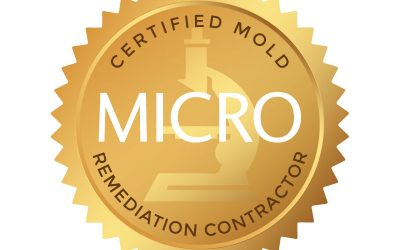 JM of New Bedford is now a Mold Remediator